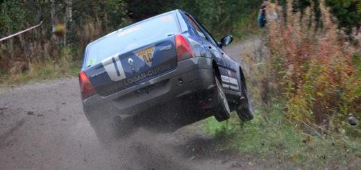 Renault Logan Cup 8V